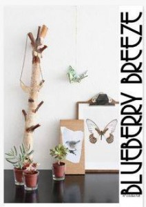 BlueberryBreeze Magazine Cover #0 Indian Fall